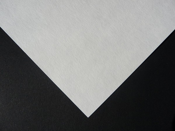 Blotting card/Filter paper